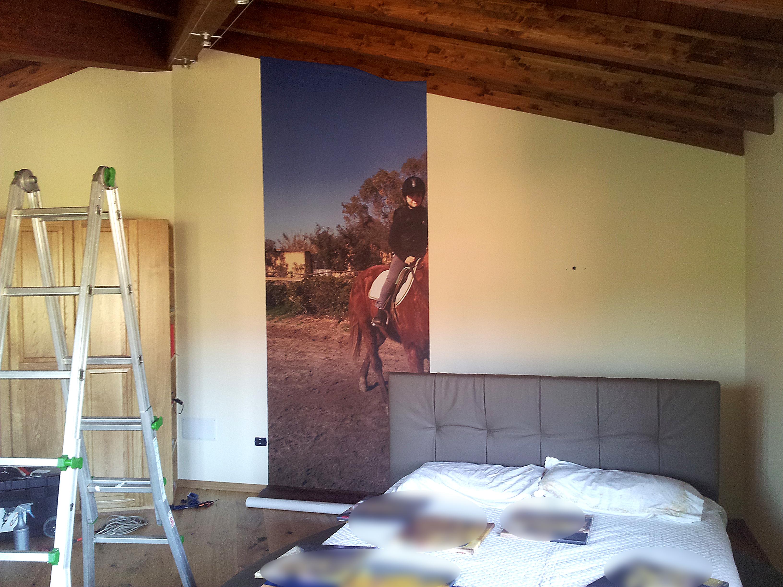 Adesivi murali for Rotoli adesivi per pareti
